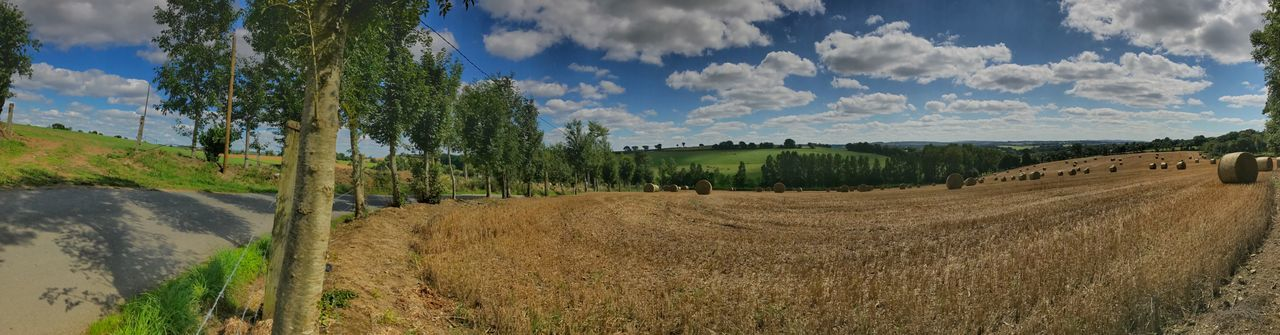 Brittany Panorama Beauty In Nature Cloud - Sky Day Environment Field Grass Land Landscape Maël-carhaix Nature No People Non-urban Scene Outdoors Panoramic Panoramic Photography Plant Road Rural Scene Scenics - Nature Sky Tranquil Scene Tranquility Tree