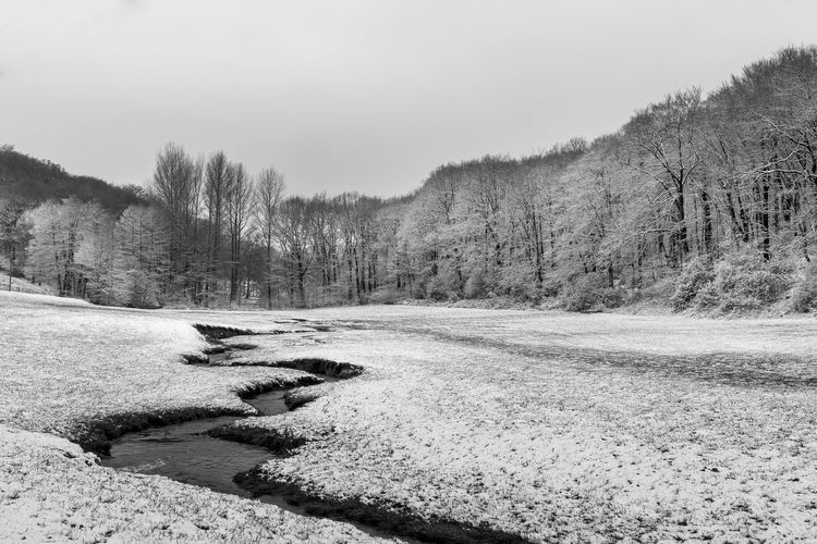 A Cover In White - X Black And White Close-up Cold Cold Temperature Colors Creek Dönberg Forest Melting Snow Nature Nature No People Outdoors Park Sky Snow Tree Water Winter