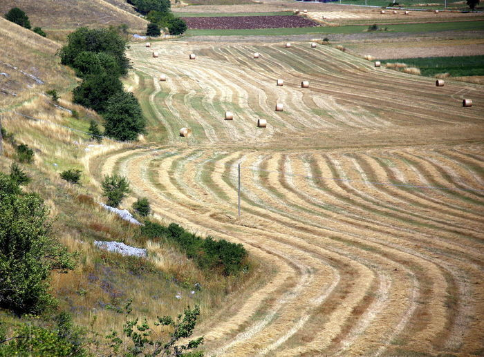 Mountain slopes and waves drawn on the ground after hay harvesting, apennines area, abruzzo, italy