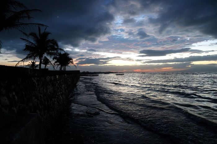 Sunset in Rosario Sea Sunset Palm Tree Water Beauty In Nature Beach Scenics Silhouette Sky Tranquility Horizon Over Water Tranquil Scene Nature Cloud - Sky Sun Tree No People Outdoors