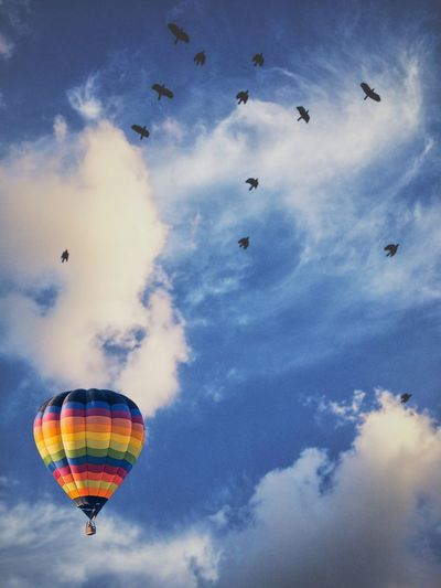 Low angle view of balloons flying in sky