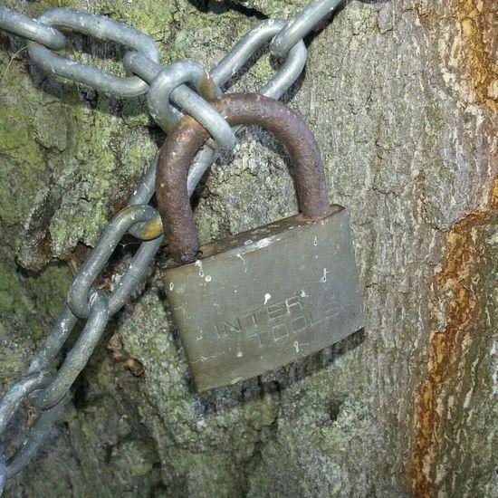Locks Awesome Locks Locked Rustythursday