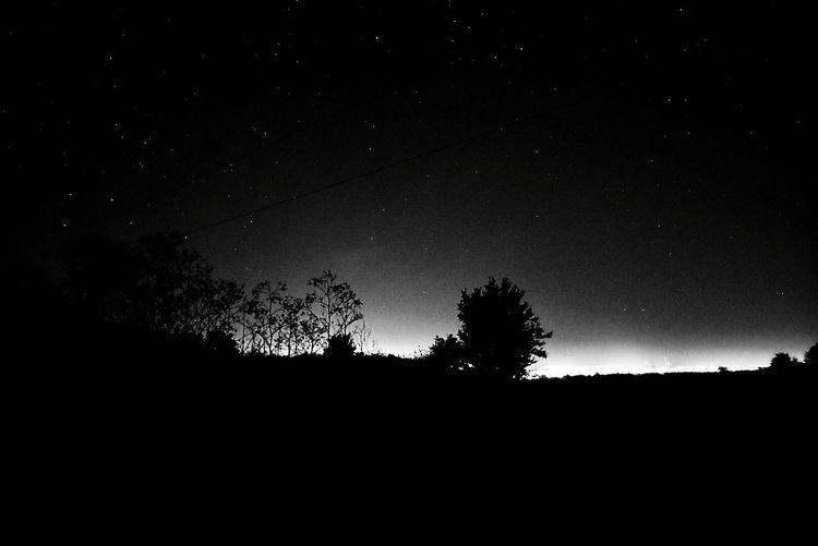 🌑 Croweyes Nature Tree Dark Night Star Blackandwhite Black And White Friday
