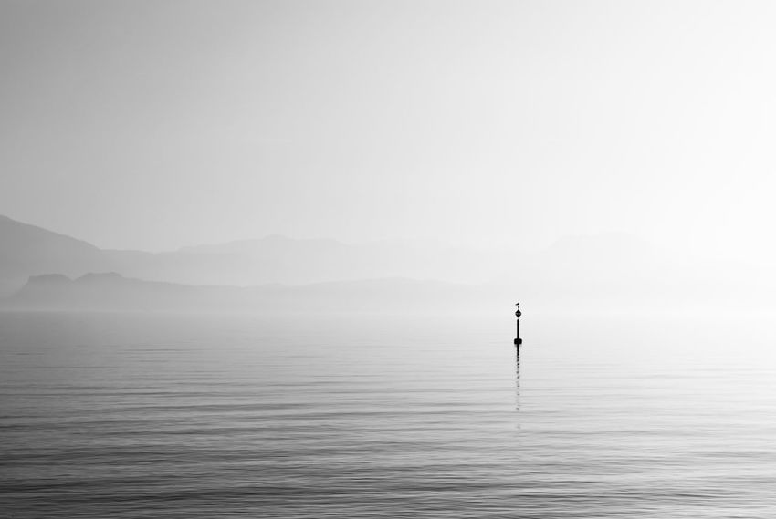 The lake guardian Alone Birds Black Black And White Blackandwhite Day Garda Guardian Horizon Over Water Lake Lonely Mist Misty Morning Nature Outdoors Quiet Scenics Seagull Sign Sitting Tranquil Scene Tranquility Water White