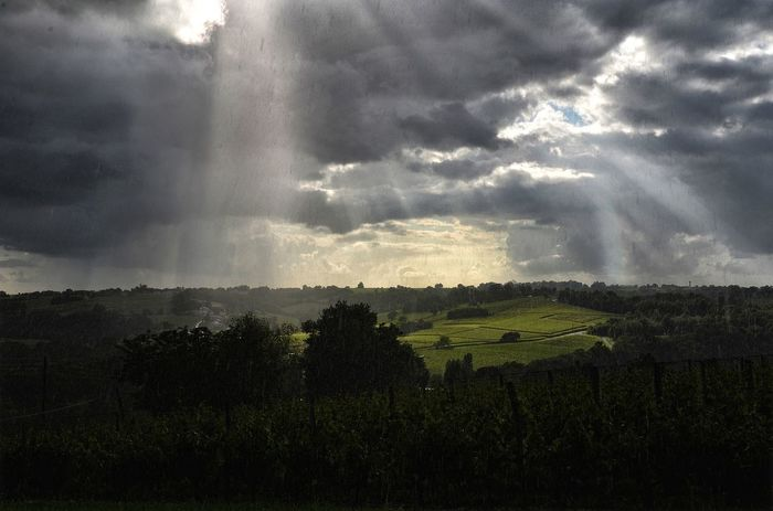 Landscape_Collection Landscape Storm Thunderstorm Dramatic Sky Extreme Weather Storm Cloud Weather Torrential Rain Power In Nature Nature Outdoors Lightning Scenics Rural Scene Colour Your Horizn