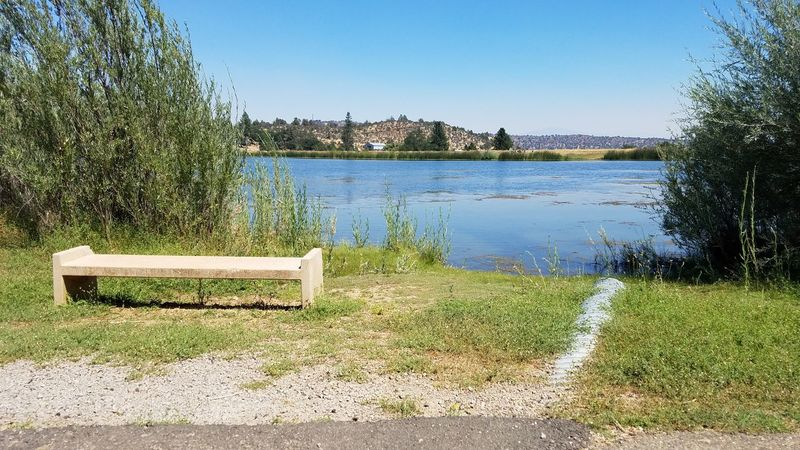 Come sit and rest awhile... Walking Path Natural Light No Edit Water Lake Outdoors Grass Bench Sit Rest Contemplation Wanderlust Meandering Wandering Meditation Scenics MountainContemplating Shadow Backgrounds Rewilding Soul Simple Copy Space Tranquility