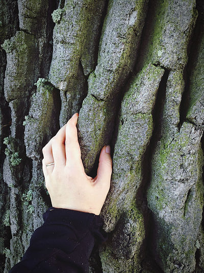 Midsection of person against tree