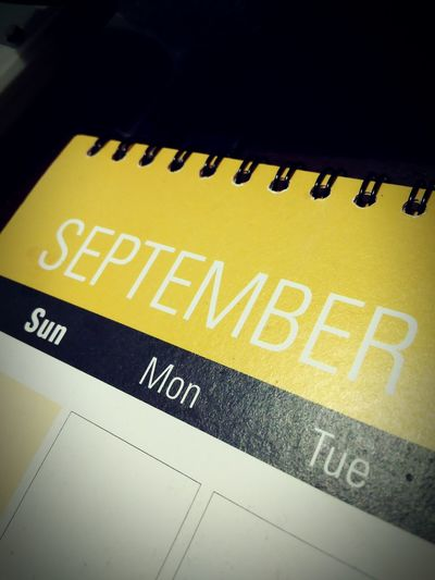 Yellow Text Communication EndOfSept End Of Summer WelcomeFall Indoors  Calendar Saturday Paint The Town Yellow