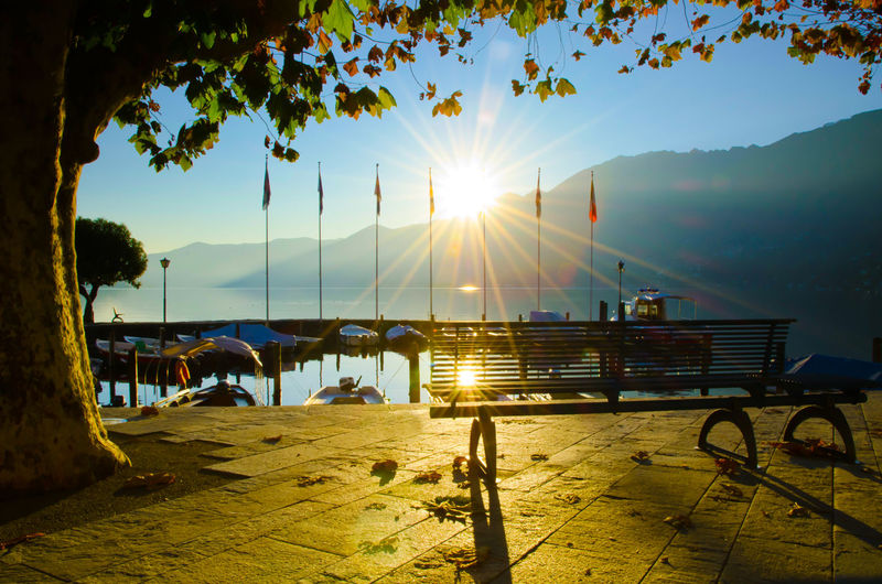 Bench and Tree close to the Port with Sunbeam and Mountain in Ascona, Switzerland. Bench Backlit Beauty In Nature Branch Bright Lake Maggiore Leaf Lens Flare Mountain Nature Nautical Vessel No People Outdoors Scenics - Nature Sky Sun Sunbeam Sunlight Sunset Swiss Alps Tranquil Scene Tranquility Tree Water Waterfront