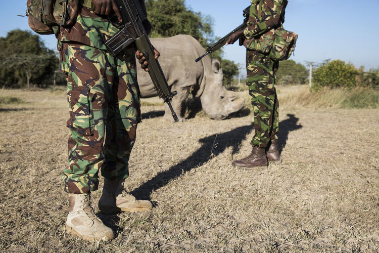 Two soldiers protect the last Northern White Rhino Black Rhinoceros Endangered Species National Park Soldier Wappen Adults Only Army Army Soldier Big Five Camouflage Clothing Day Gun Low Section Military Military Uniform Nashorn Northern White Rhino One Person Outdoors People Protection Rifle Shadow Standing Weapon
