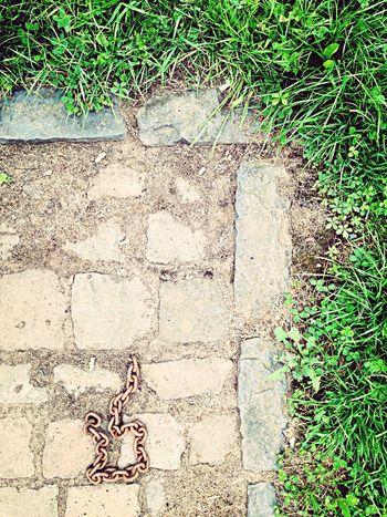 Django Unchained Grass Brauneberg Mosel