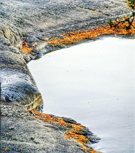 Beauty In Nature Rocks And Water Littoisten Järvi Nature Close-up