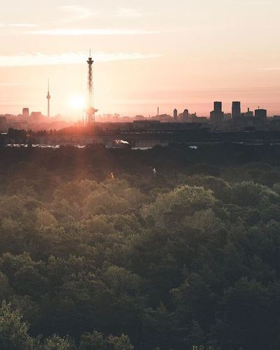 Discover Berlin Lost In The Landscape