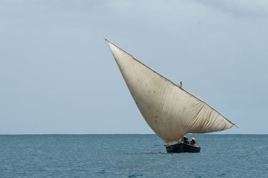 Sailing Dhow Ocean View Sky And Clouds Beauty In Nature Clear Sky Day Dhow Dhow Boat Dhowcruise Horizon Over Water Nature No People Ocean Outdoors Sailing Scenics Sea Sky Tranquility Water Waterfront wasini sail The Week On EyeEm