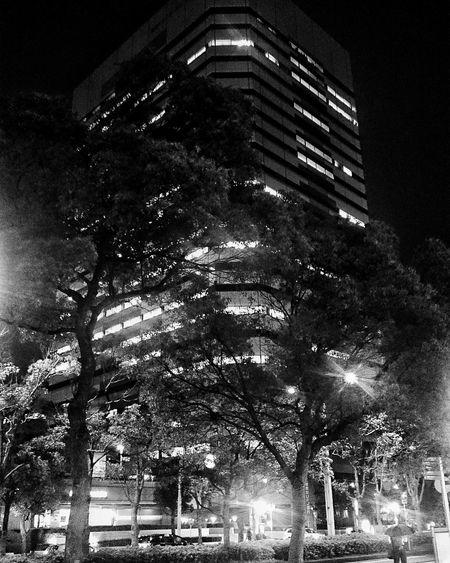 Makuhari Chiba Tokyo City Japan ASIA Lightatnight Travel World ASIA Welcome To Black