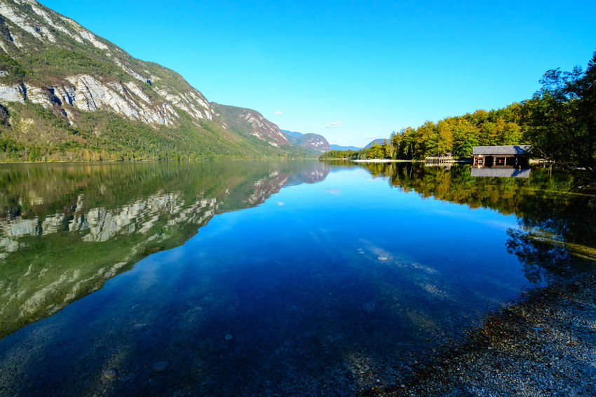 Nature Sky Day Bohinjsko Jezero Water Reflection Beauty In Nature Lake Blue Waterfront Scenics - Nature Tranquil Scene Tranquility Mountain Symmetry Idyllic Clear Sky No People Non-urban Scene Tree Outdoors
