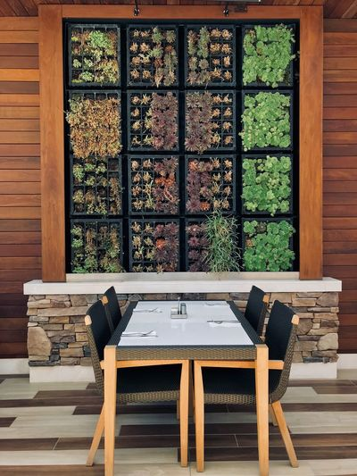 Pechanga Resort & Casino Absence Architecture Built Structure Chair Coffee Table Day Empty Furniture Glass Glass - Material Home Interior Indoors  Nature No People Plant Seat Setting Succulent Plant Table Transparent Window Wood - Material