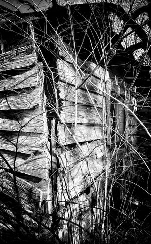 Abandoned Buildings Abandoned Places Abandoned Window Run Down Places Old Buildings Old Slat Wall Wood Noir Wall Blackandwhite Cracked Twigs