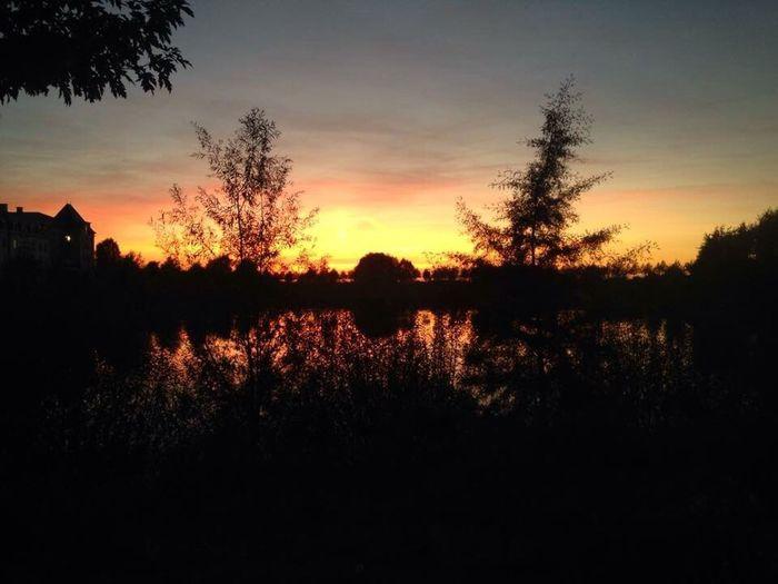 Sunset Sun Paris Parissunset Beautiful Iphonephotography Trees Bushes Shadows Riverscape Relections Water Lake