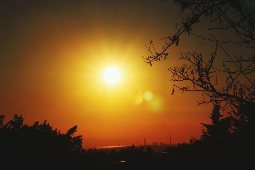 Hello World Hi! Relaxing Enjoying Life Sunset_collection Sunshine Sun Sunset Sunrise Photography Popular Photos First Eyeem Photo Eye4photography  EyeEm Nature Lover EyeEm Best Shots EyeEm Gallery Eyeemphotography EyeemTeam EyeEmTurkey EyeEm Team EyeEm TreePorn Tree_collection  Tree Beatiful