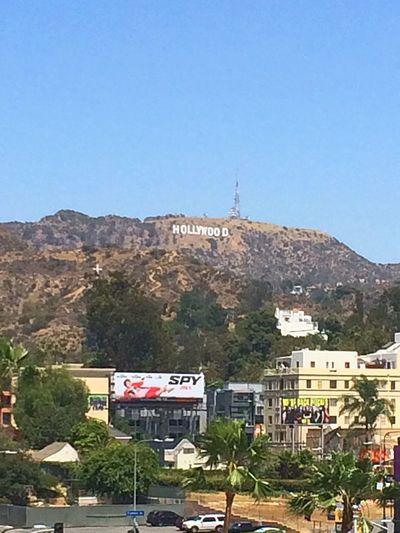 ハリウッド ハリウッドサイン Hollywood Hollywoodsign Hollywoodsign