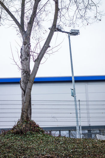 Architecture Bare Tree Blue Blue Line Branch Built Structure Day Fabric Grey Day Grey Sky Growth Kahl Minimalism Nature No People Outdoors Sky Social Issues Tree Tree And Sky Tree Trunk Tristesse