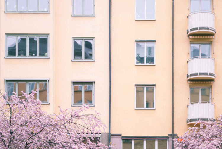 Apartment Backgrounds Balcony Building Building Exterior Cherry Blossoms City City Life Façade Full Frame Geometric Shapes Growth No People Pink Hue Residential Building Stockholm Straight Sweden Window Yellow