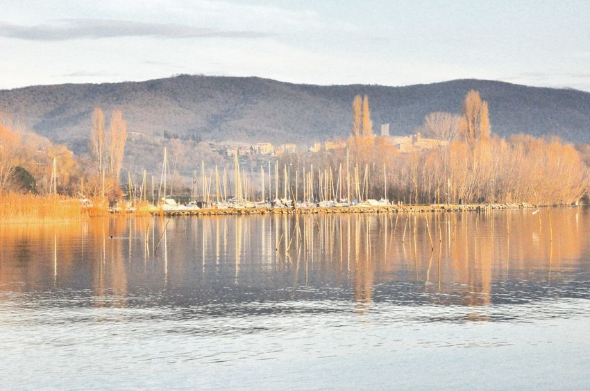 Lake Reflection Nature Water Outdoors Tranquility Day No People Sky Beauty In Nature Trasimenolake