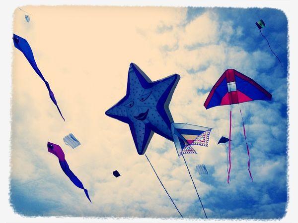 Enjoying Life Kite