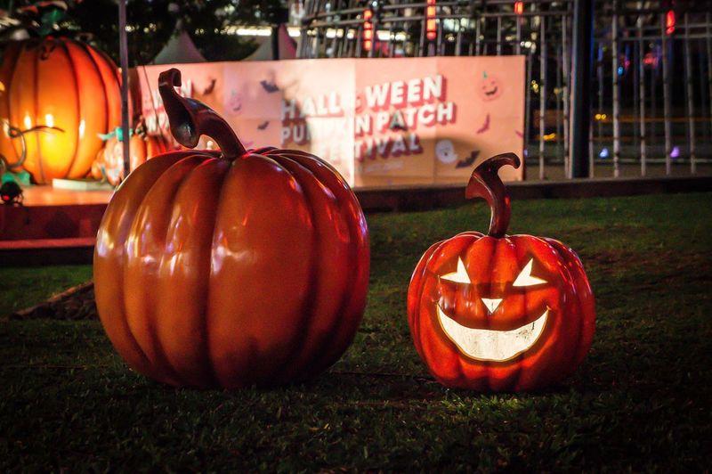 Close-up of pumpkin on grass