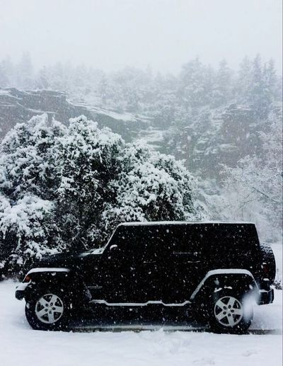 Jeep Wrangler Unlimited Winter Snow Weather Cold Temperature Storm Mode Of Transport Snowing Outdoors Tree Day Nature Snowflake