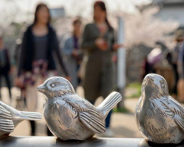 Bird Bird Statue Japan Street Sculpture