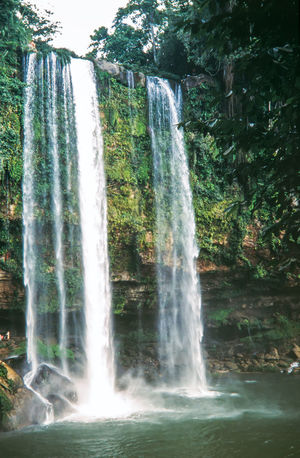 Wonderful Misol-Ha waterfall, Chiapas, Mexico Green Mexico Misol Ha Waterfalls Palenque, Chiapas Travel Tropical Paradise Forest Idyllic Jungle Landscape Nature River Scenics Tourism Travel Vacations Water Waterfall