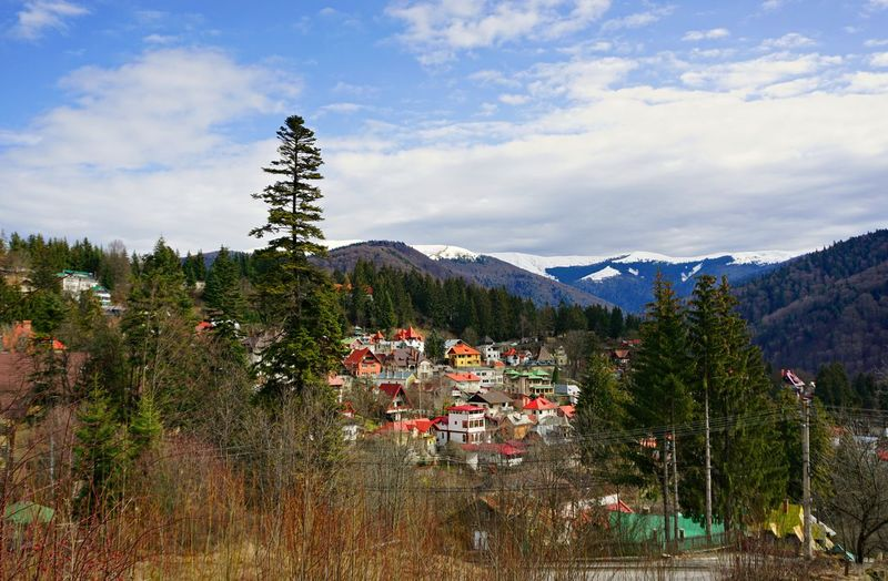 Panorama Romania Sinaia Sunny Tranquility View Architecture Beauty In Nature Building Building Exterior Built Structure Clouds And Sky Day House Land Landscape Mountain Mountain Peak Nature Outdoors Sky Snow Traditional Tree Village