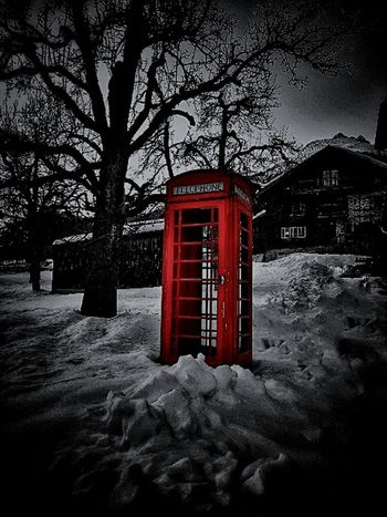 Old Telephone Mountain Tree Snow Day Old Telephone Old Phone Box Communication Telephone Booth Red Tree Mail Public Mailbox Convenience Outdoors Pay Phone Nature Winter Telephone