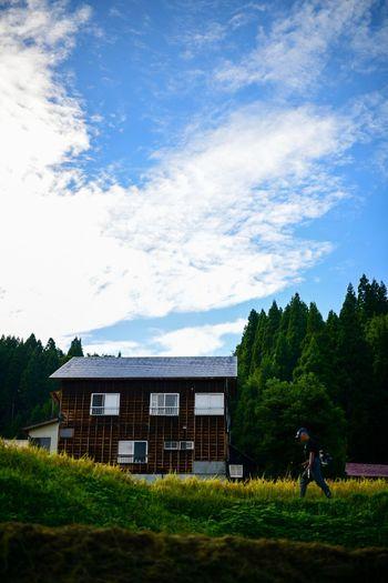 新潟の風土が好きだ。 Sky Plant Architecture Built Structure Building Exterior Cloud - Sky Tree Nature House Grass Day Residential District Real People Field Land Men People Outdoors