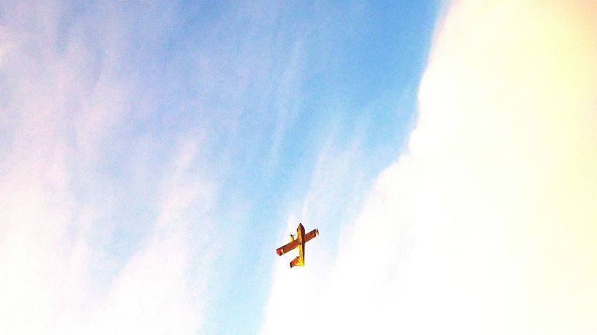 Up In The Sky Flight Aeroplane What's Up Eyes Up  Sky Sight From The Towel Sight From The Seaside Firewatch Life 3 Filter