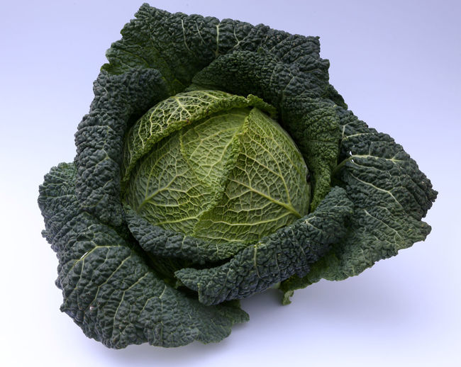 Close-Up Of Fresh Cabbage Over White Background