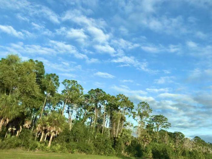 Miami ✨ Sky