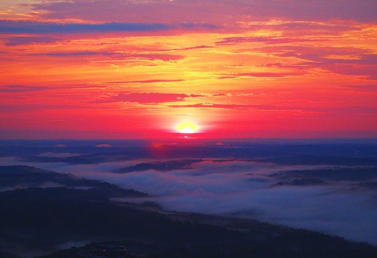 Sunrise fog Sunset Beauty In Nature Scenics Nature Cloud - Sky Sky Majestic Orange Color Tranquil Scene Tranquility Dramatic Sky Outdoors No People Day Aerial View Aerialview Aviationphotography Aviation Photography Illuminated Backgrounds
