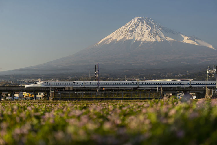 Japan Bullet Train and Mount Fuji in the Background Mount MT Fuji Mountain Sunset Evening Dusk Field Meadow Bullet High Speed Train Snow Snow Cap Shinkansen Japan Japanese  Technology Modern Fast View Scenery Scenic Landscape Town Train Railroad Railway Track Rail Electricity  Flowers Peak Blue Sky White ASIA Travel Volcano Landmark Famous Nature Beautiful Transportation Infrastructure Clouds Advance Hi Tech Commute Speed Rapid