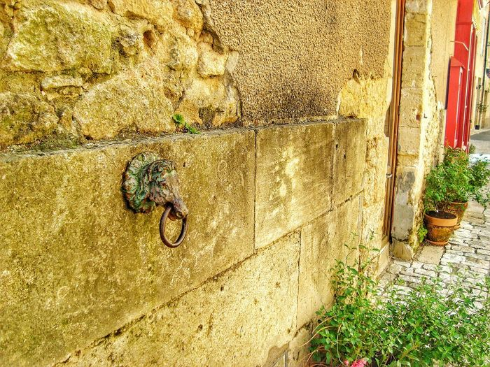 Detail Eye4photography  HEAD Horse MedievalTown Metal Metal Horse Head Metalwork Mooring My Point Of View Old Old Street Plants Pots Ring Steel Rope Shackle Stone Stone Wall Textured  Vintage Wall Wall - Building Feature