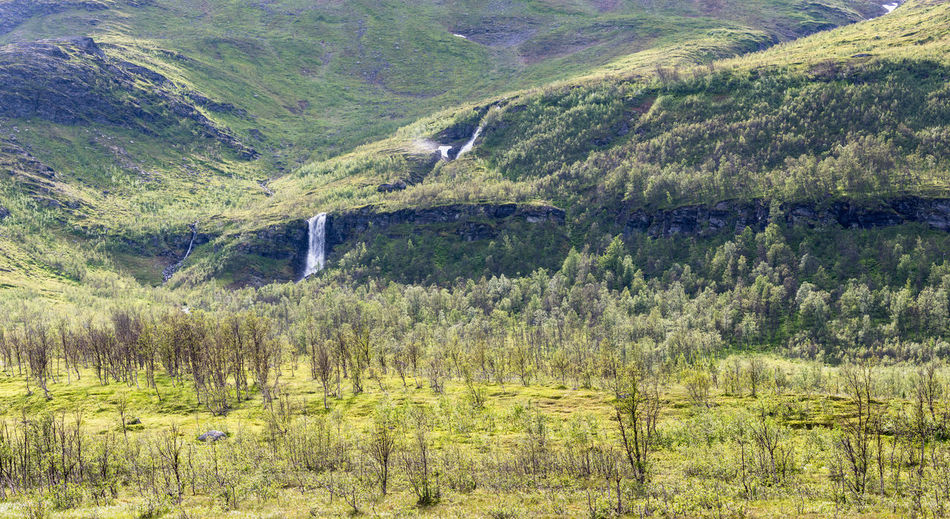 Scenic view of green landscape with waterfall