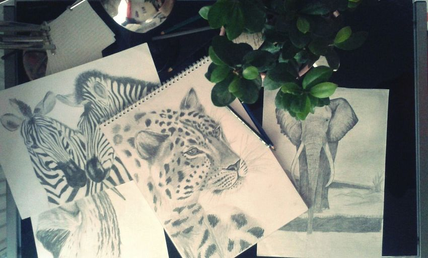 Desks From Above My Art, My Soul... Wildafrica