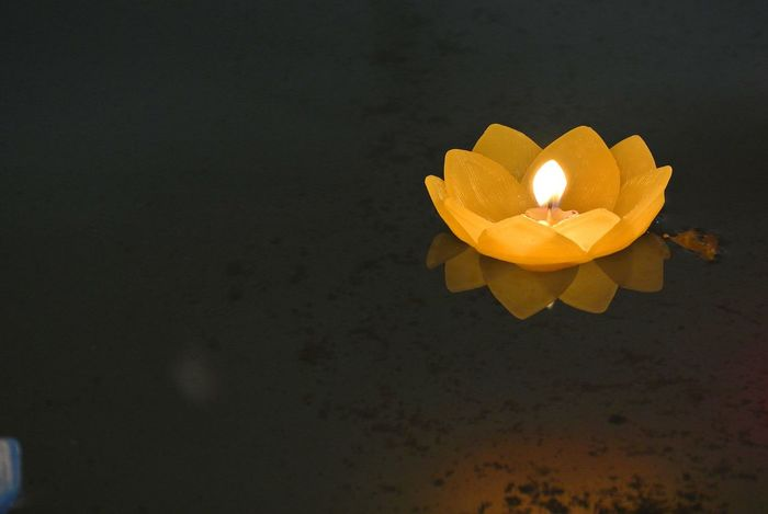 Candle Candle Light Close-up Floating On Water Flower Flower Candle... Flower Head Fragility Freshness Indoor Photography Indoors  Light And Shadow Nature No People Outdoors Shadow Shadow And Light Shrine Shrines & Temples Spirituality Temple Thailand Traditional Culture Yellow Yellow Flower