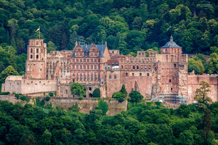 The castle (Castle Ruin) in Heidelberg, Baden Wuerttemberg, Germany Heidelberg Ancient Ancient Civilization Architecture Building Building Exterior Built Structure Castle Green Color Heidelberger Schloss History Mansion Nature No People Old Outdoors Plant Scenics - Nature Schlossruine The Past Tourism Travel Travel Destinations Tree