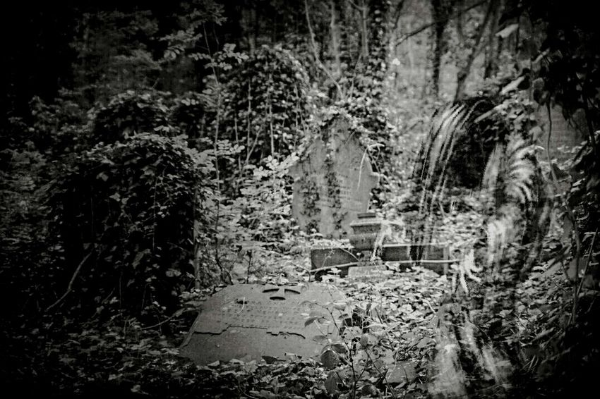 Walking Around The Cemetery Bristol Uk Rundown Cemetery Just For Fun👻👀 Relaxing Taking Photos Heavy Edits