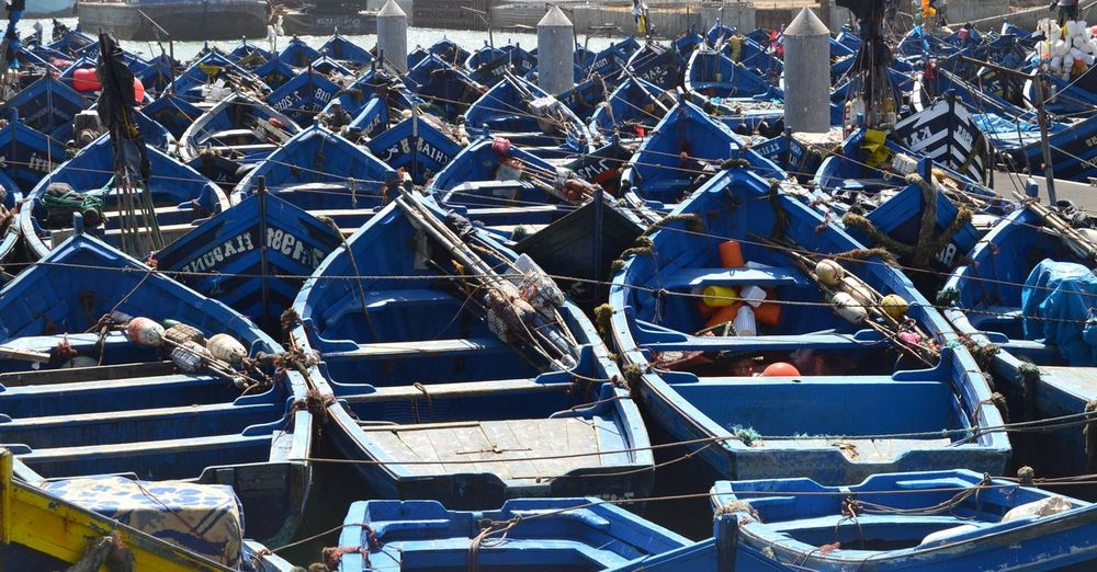 Large collection of wooden blue fishing boats side by side in Morocco. Nautical Vessel Mode Of Transportation Moored Transportation Day Water Harbor No People In A Row Rope Outdoors Blue Abundance High Angle View Nature Sea Side By Side Large Group Of Objects Sailboat Fishing Industry Port Fishing Boat Rowboat Blue Boat Essaouira