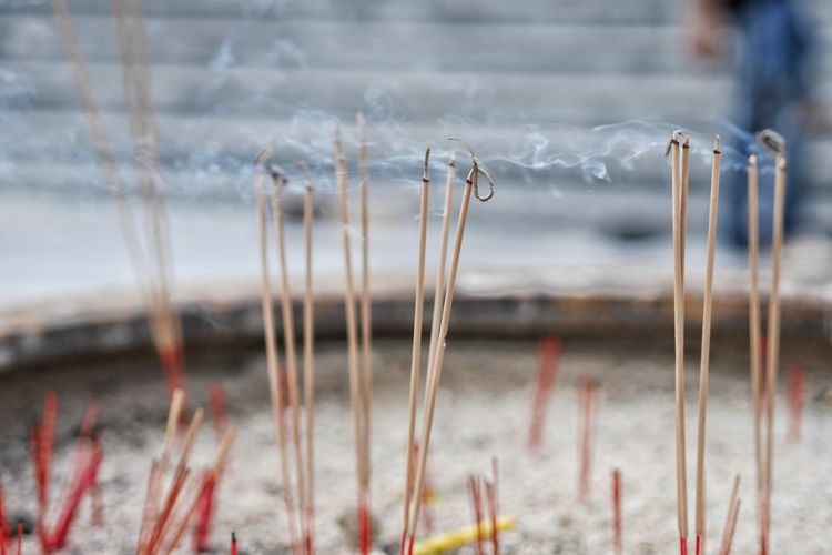 Close-up of incense on ash
