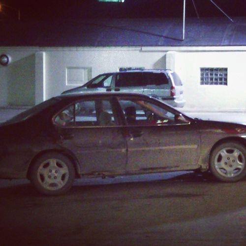 I saw a dog drive last night. Dog Car Dirtycar Doggy